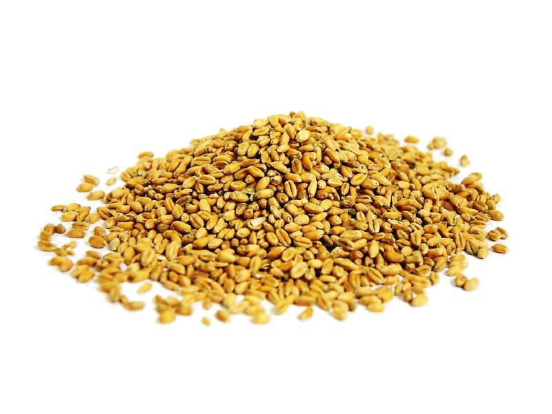 weat & oats